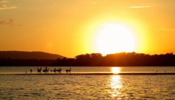 Noosa Sunset cruise with Noosa Dreamboats
