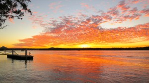 Imagine cruising into this Noosa river sunset on a classic 1940's style mahogany boat.