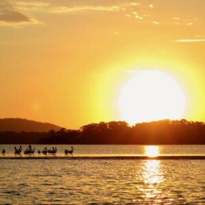Sunset cruise with Noosa Dreamboats